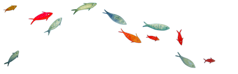 graphiques poissons volant